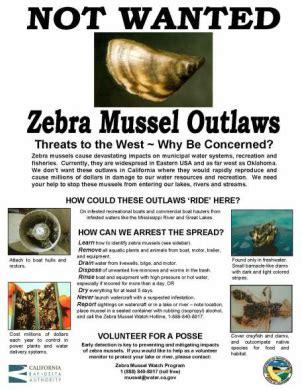 quagga software wikipedia ecology zebra mussel