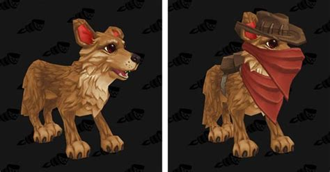 Wow Vanity Pets by Warcraftpets Wow Battle Pets Companions And Vanity Pets