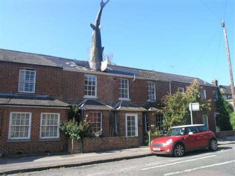 shark house headington shark house to let