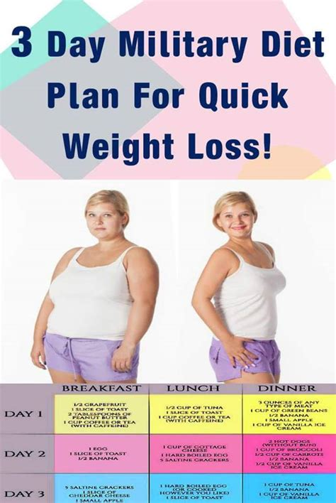 Easy Weight Loss Detox Plan by 3 Day Diet Plan For Weight Loss Daily