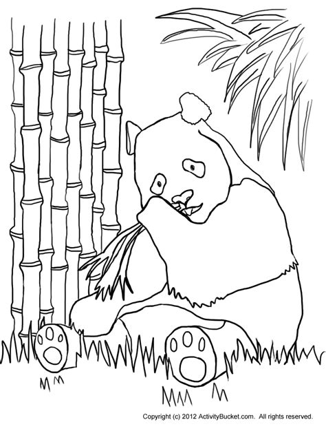 Colouring Pages  Activity Bucket sketch template