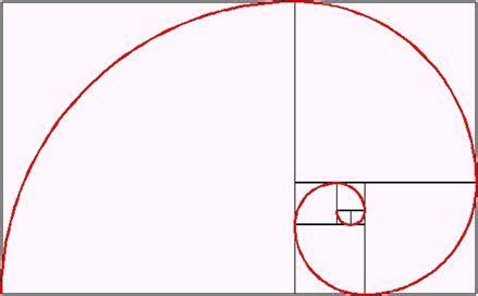 Spiral Kawat A4 1 14 Hitam 2 スパイラル