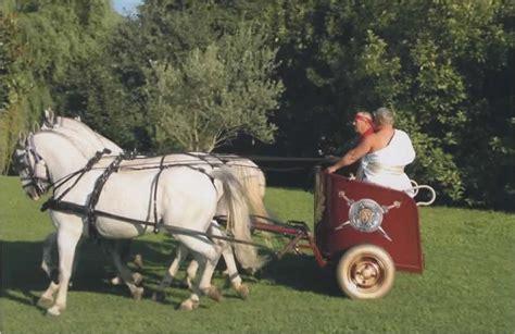 Cavalli Carrozze - cavalli e carrozze matrimonio con carrozza