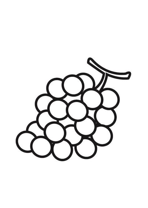 imagenes de uvas dibujo para colorear uvas img 23175