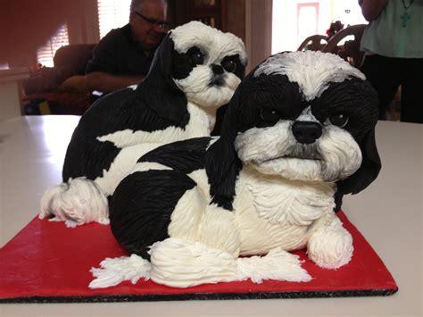 shih tzu birthday shih tzu birthday cakes cakecentral