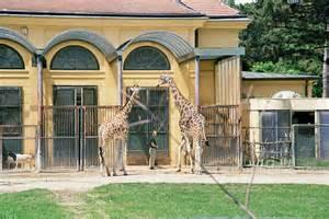 zoologischer garten wien tiergarten sch 246 nbrunn das gibt es gt infos und bilder