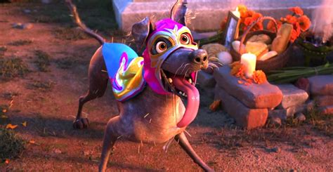 coco dante disney pixar s coco presents dante s lunch a short tail