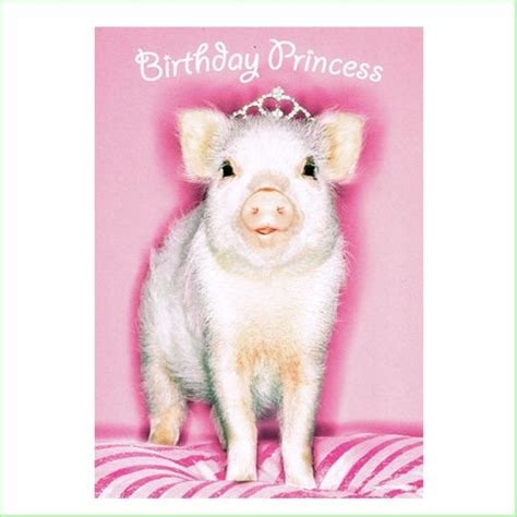 Stin Up Birthday Cards Pig Birthday Cards 28 Images Pig Birthday Quotes