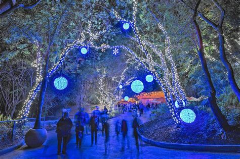 L A Zoo Powers Up To Celebrate The Season Glendale News Zoo Light Show