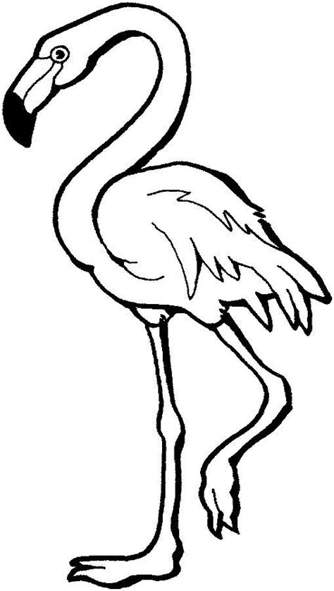 flamingo coloring pages auromas com