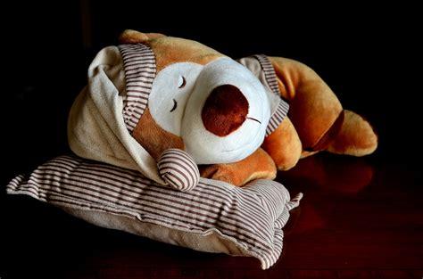 dormire con cuscino tra le gambe dormire con due cuscini significato casamia idea di immagine