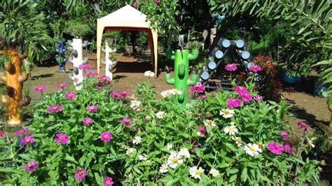 peluang usaha rumahan agrobisnis modal kecil