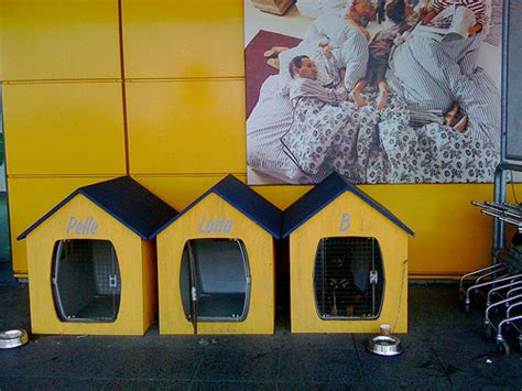 Ikea Dog Parking | dog parking at ikea dog milk