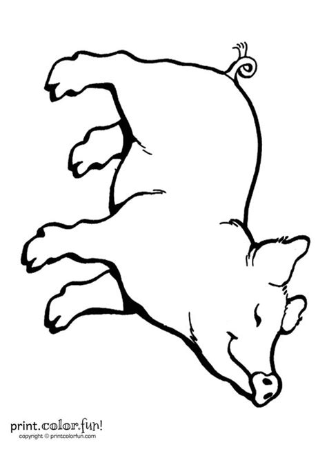 pig template for preschoolers pig template for preschoolers clipart best
