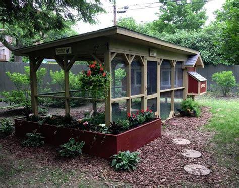 backyard chicken pens 25 best ideas about chicken coop garden on pinterest chicken coups fancy chicken