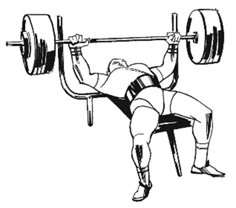 how to lift more weight on bench press bench press clipart clipart suggest