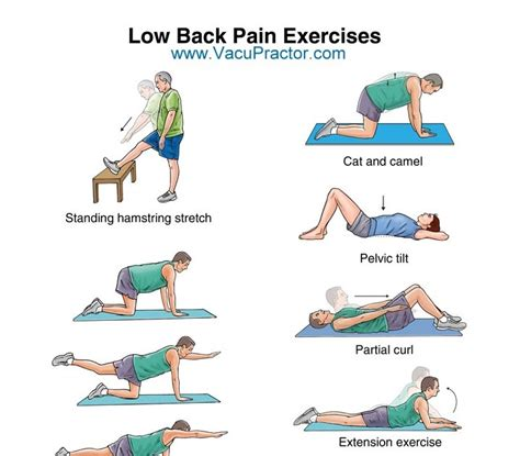 lower back pain after c section abdominal exercises done standing up best abdominal