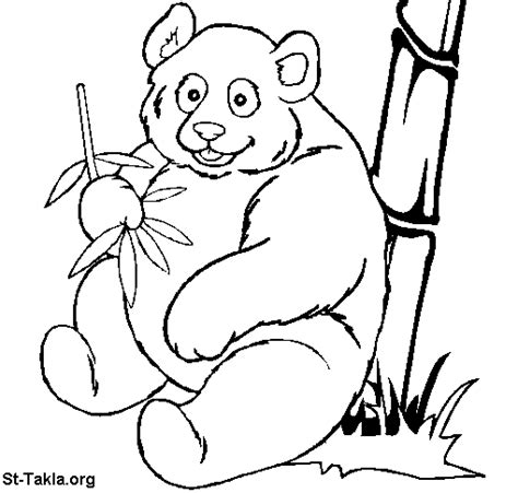 coloring page of giant panda panda coloring pages