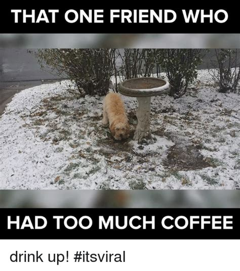 much coffee meme 25 best memes about much coffee much coffee memes