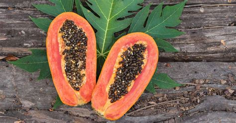 Liver Detox Papaya by Papaya Seeds For Gut Health Liver And Kidney Detox