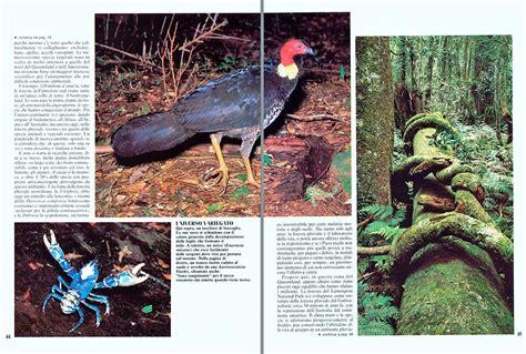 uccelli non volanti dr giuseppe mazza journalist scientific photographer