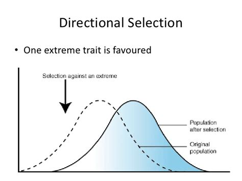 what are some exles of directional selection socratic