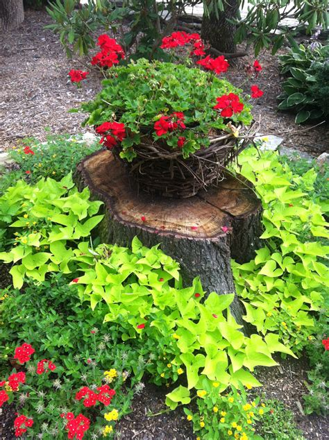 what to do with plant stump as christmas decoration outdoors pretty way to make use and hide a tree stump landscaping plants landscaping