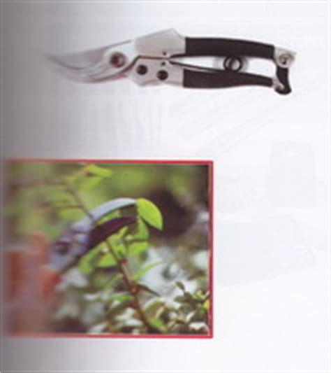 Prunning Saw Gergaji Kopi Coklat Alat Pemotong Alat Kebun product of perkakas gunting tanaman supplier perkakas teknik distributor perkakas teknik