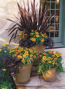 25 best ideas about potted plants on potted plants patio outdoor potted plants and