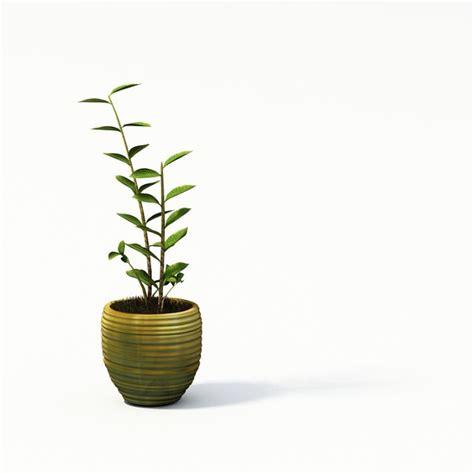 Decorative Plant Pots Decorative Plants In A Pot 3d Model Cgtrader