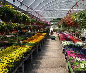 Garden Center Hiring Schedule Your Seed Starting Gardening