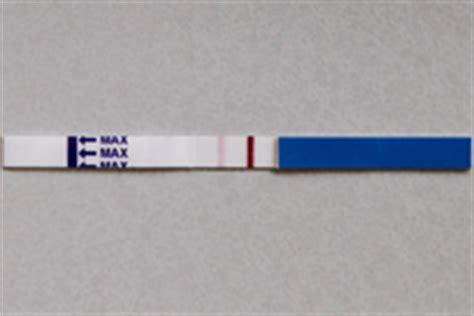 testo faint faint line pregnancy test
