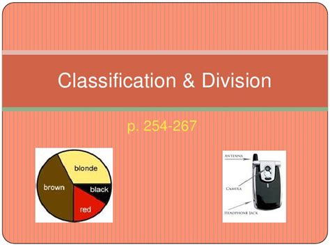 classification and division essay sle division and classification essay persepolisthesis web