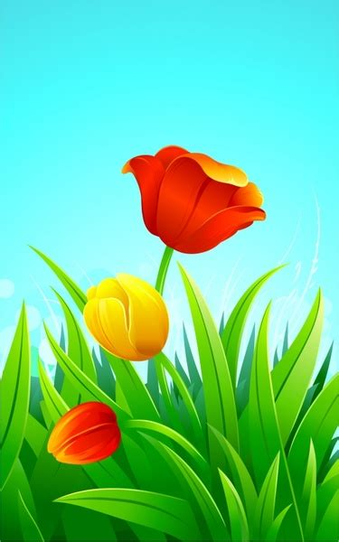 tulip  vector    vector