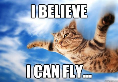 I Believe I Can Fly Meme - i believe i can fly i believe i can fly cat quickmeme