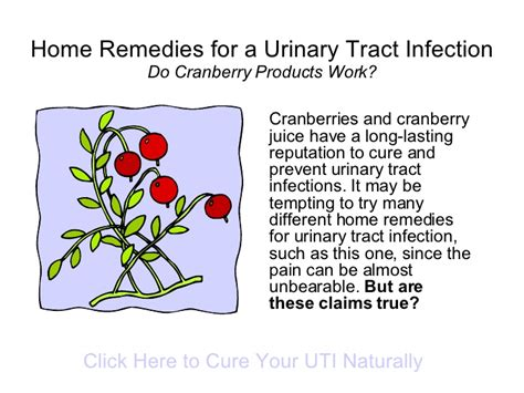 Bladder Infection Home Remedies by Home Remedies For A Urinary Tract Infection