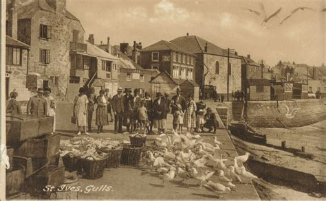 the history of st quot the story of st ives quot tour guided tours of st ives