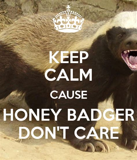 Honey Badger Don T Care Meme - tabletke tudi niso vredu za mone medovernet