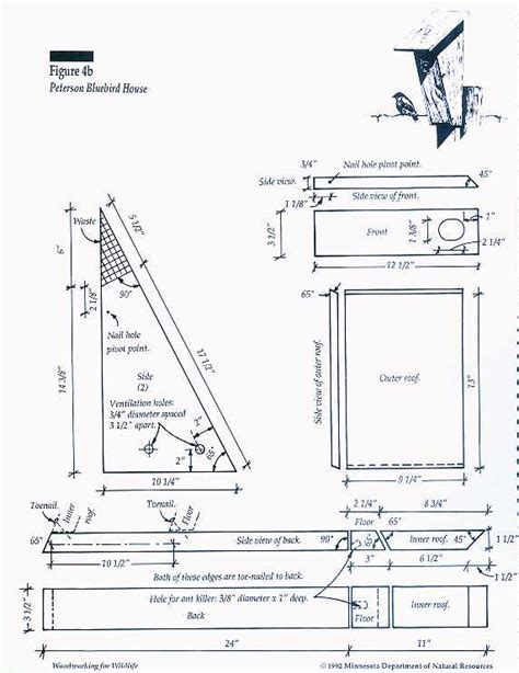 Bluebird Bird House Plans Signs Of Report Your Observations