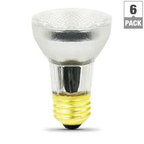 60 watt 120 volt light bulb feit electric 60 watt white 2700k par16 dimmable