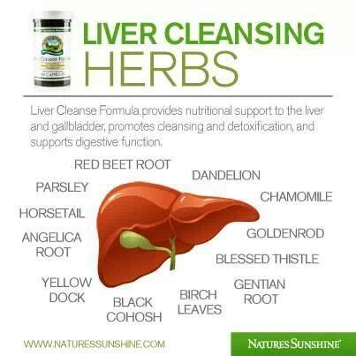 Safe Herbal Liver Detox For Alcoholic by 1000 Images About Liv On Health Milk Thistle