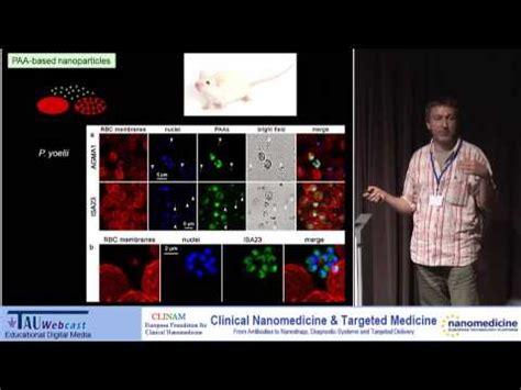 nanomedicine against malaria: use of poly based