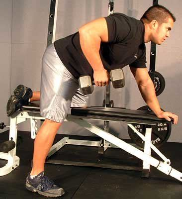 dumbbell back exercises no bench free workout routines men