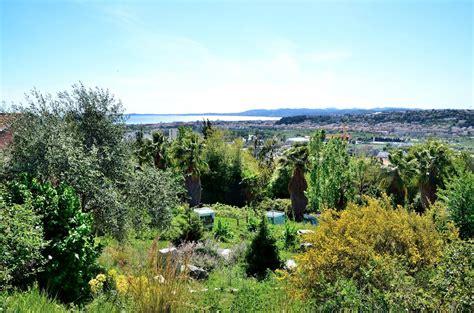 panoramio photo of jardin botanique de la ville de