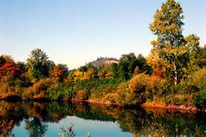 of oregon colors eugene oregon fall colors photo page everystockphoto