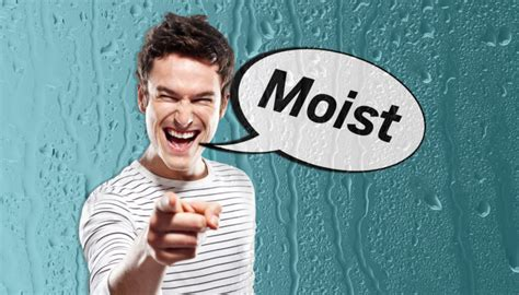 Do You Use The Word Moist To Describe Cakes by Why Do Most The Word Moist So Much Metro News