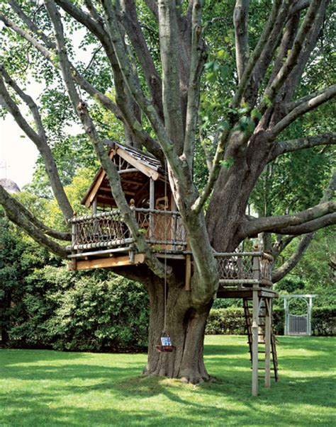 a backyard treehouse inspired by hobbits hooked on houses
