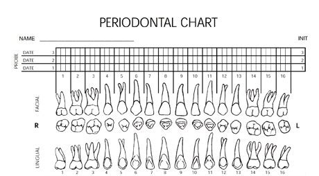 periodontal chart template downloadable forms periodontal charting form dentistryiq