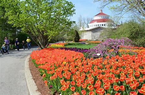 Botanical Gardens Cincinnati Cincinnati Zoo Botanical Garden All You Need To Before You Go With Photos Tripadvisor