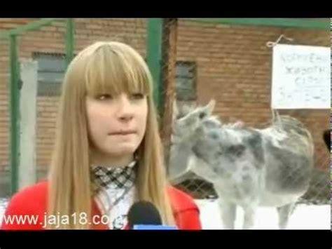 videos graciosos para facebook y whatsapp animales burro